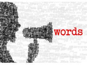 palavras (1)